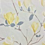 saturi-mimosa-4